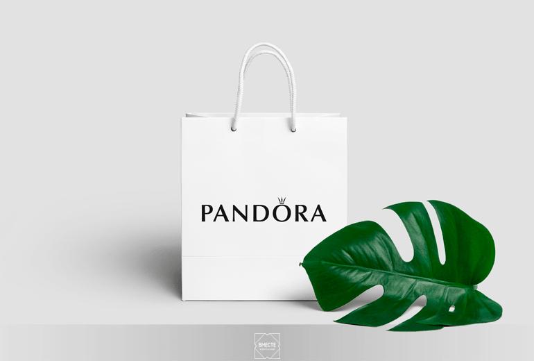 Дизайн бумажных пакетов, нанесение изображений и логотипа